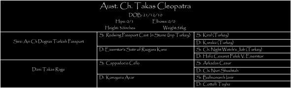 cleopedigree